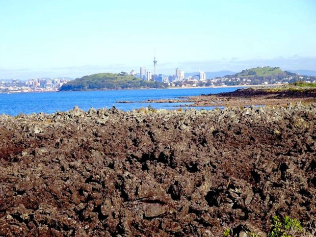 Vue d'Auckland depuis Rangitoto