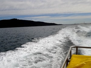En route pour Stewart Island!