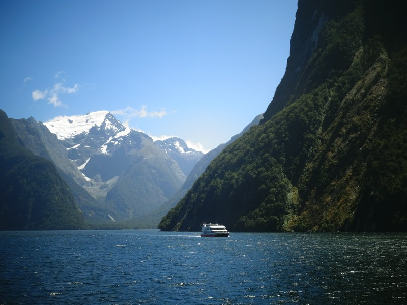 CRUISING THE MILFORD SOUNDS