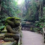 Does all the roads lead to Ubud?