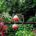 MY FAVORITE BICYCLE TRIPS AROUND HUALIEN
