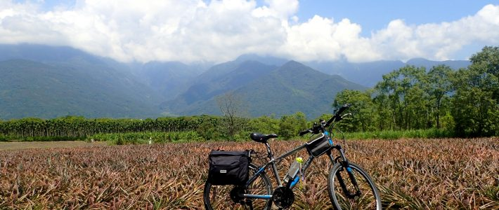 GETTING READY FOR A CYCLING TRIP IN TAIWAN : TIPS FOR BEGINNERS FROM A NEWBIE CYCLIST